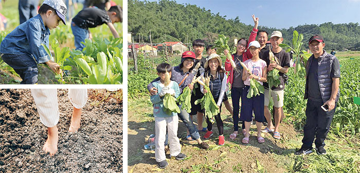 Farmer Siao Introduces Meinong's Agricultural Industry